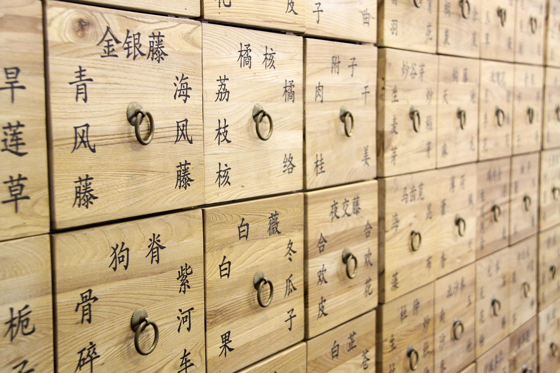 Was ist Traditionelle Chinesische Medizin (TCM)?
